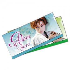 チケットケース(紙製) アトムのエンタメグッズ